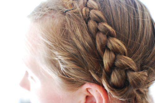 DSC_0330 - braids